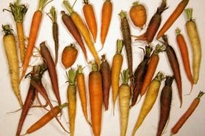 typen wortelen
